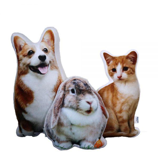 kussen-hond konijn kat