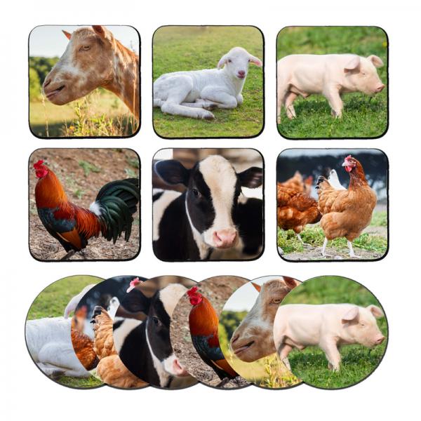 pillowbuddies-Boerderijdierenwebsite