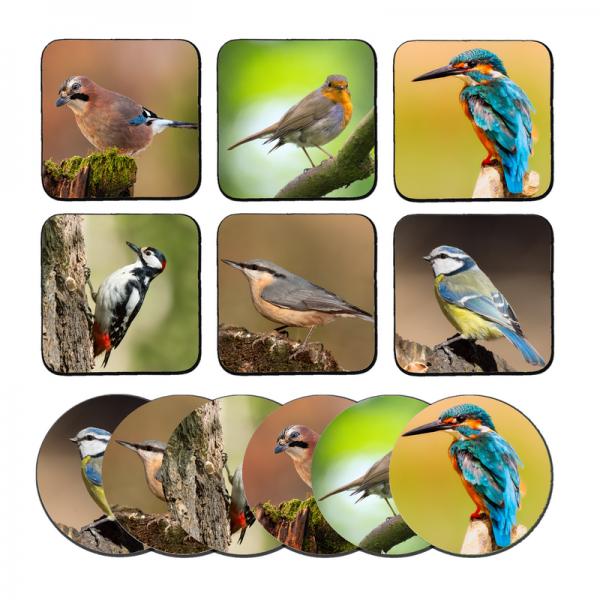 pillowbuddies-Vogelswebsite