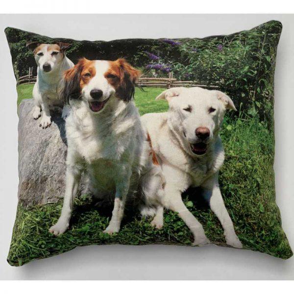 pillowbuddies-vierkantkussenhonden